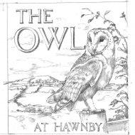 Signature Signs - Owl sketch